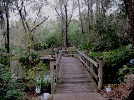 Path toward the falls