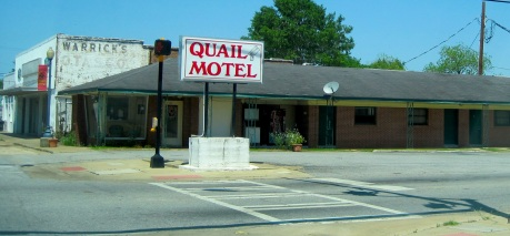 Driving by Quail Motel has been part of my back roads experience for over 45 years. I never see cars there!