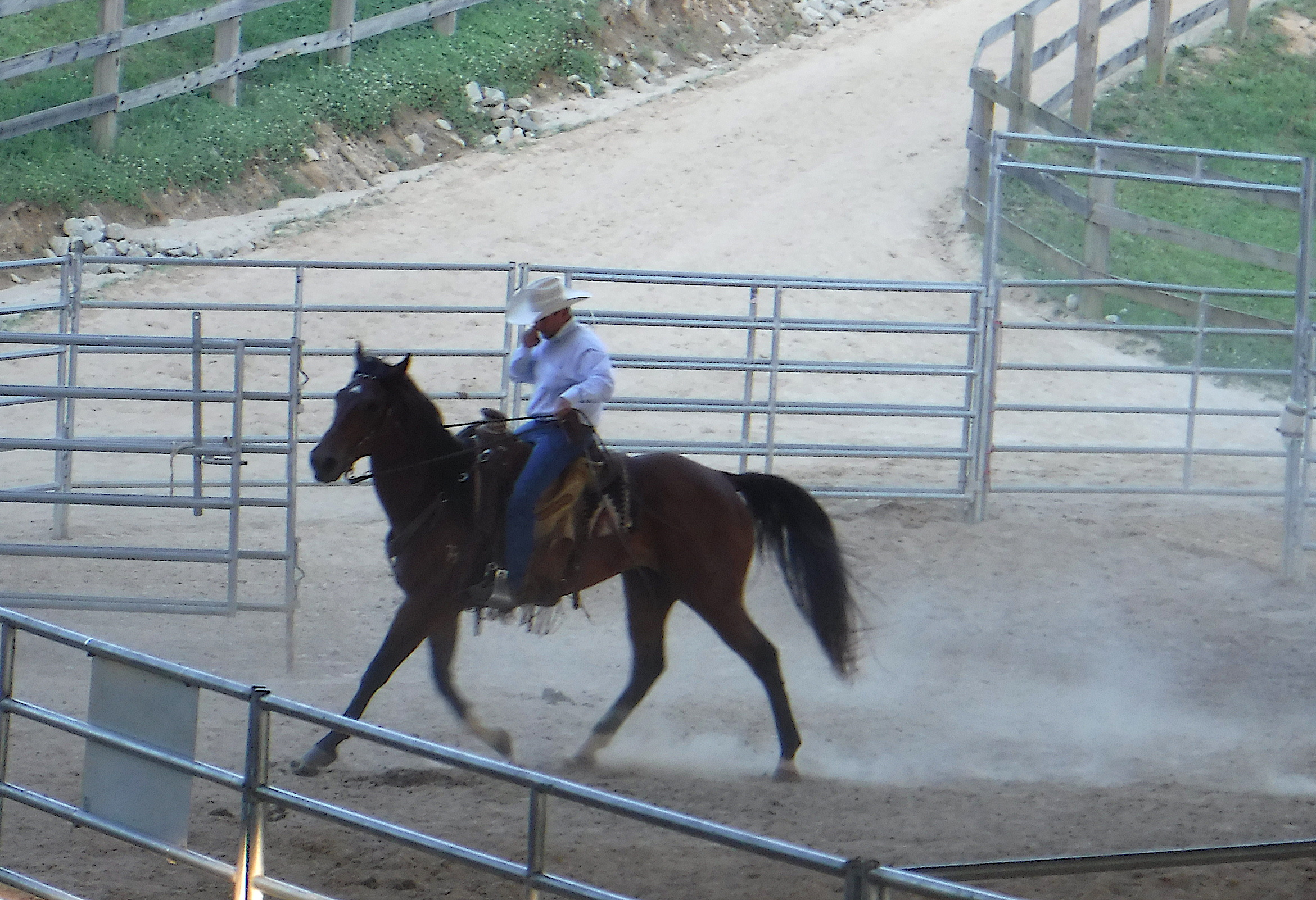 2019-5-25 Rodeo-3
