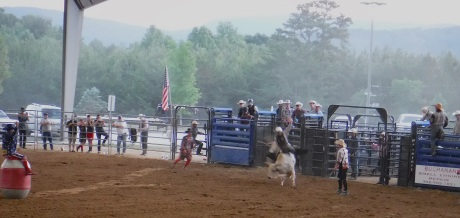 2019-5-25 Rodeo-9